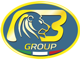Bargam Lion Logo