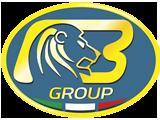 Bargam Lion Logo